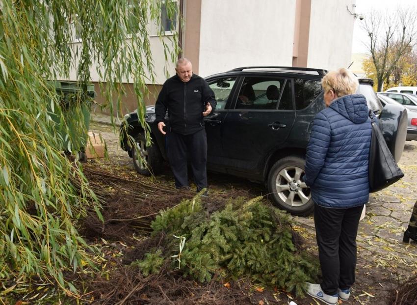 Gmina Nowy Dwór Gd. 650 sadzonek drzew trafiło na tereny wiejskie.
